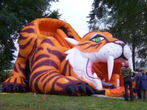 zj tygrys010 300x225