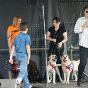 pokaz psich sztuczek imprezy dla dzieci atrakcja iki studio 2 300x300